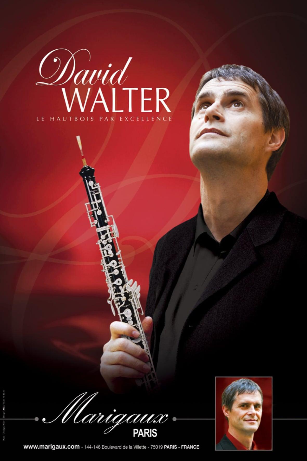affiche david-walter
